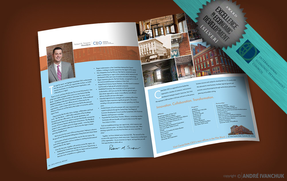 CenterState CEO Annual Report Design