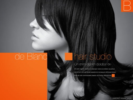Beauty Blanc Hair Studio