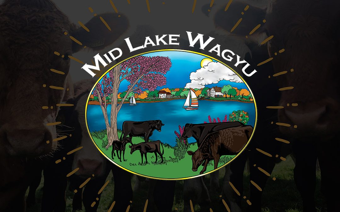 Mid Lake Wagyu Branding Website eCommerce & Marketing